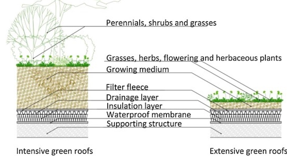 green roofs  green roofs     trend